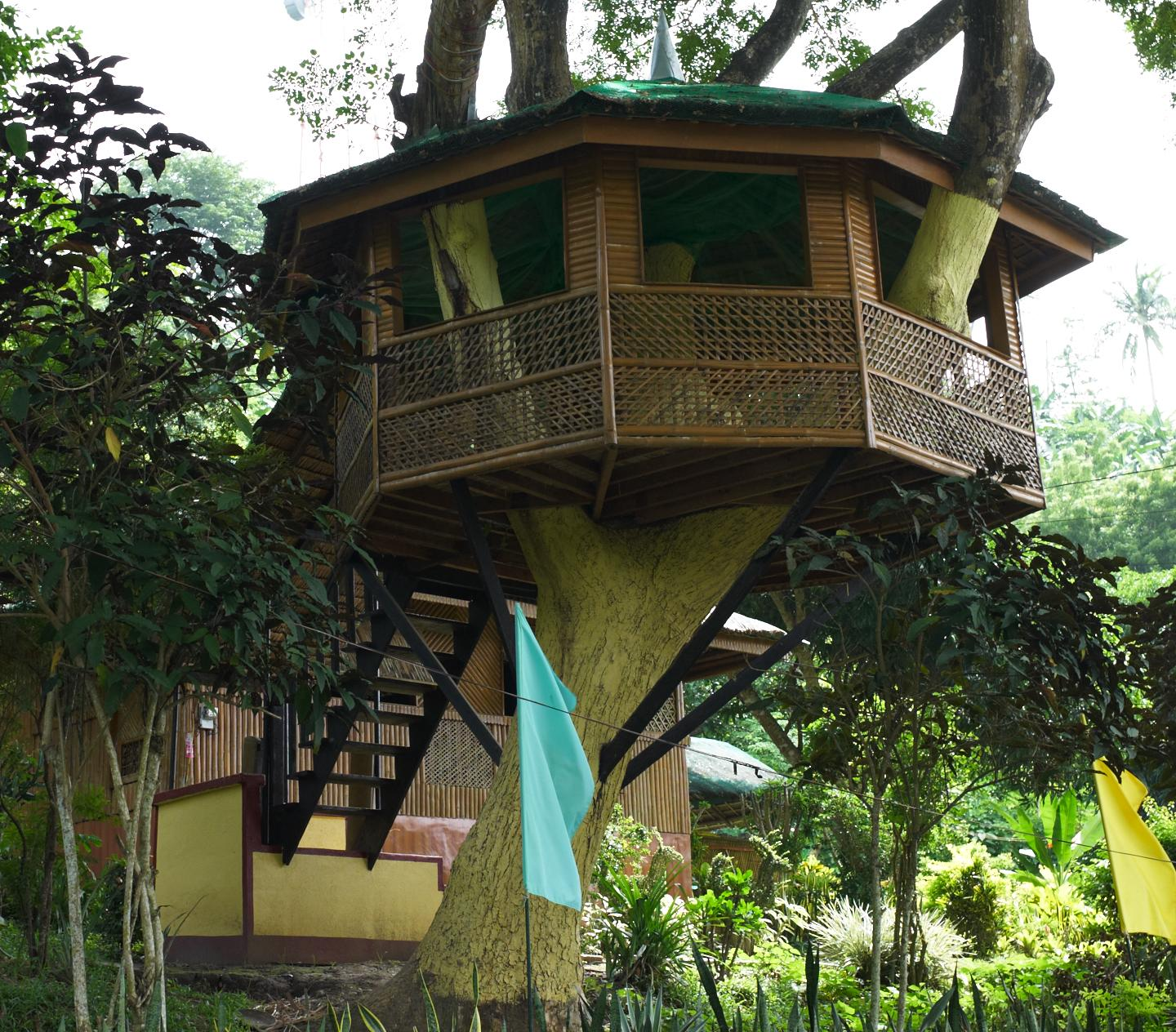 31 Tree House L1292732 Trevor Guy Life Journal