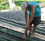 50 Bamboo-7498