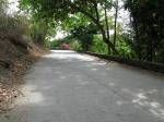 61 Road-7962