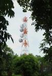 67 Tower-DSCF0979