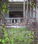 71 House-DSCF1448