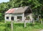 71 House-DSCF1498