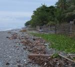 73 Beach-DSCF1715