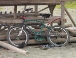 73 Bike-L1295410