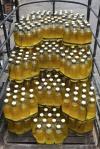 82 Bottles-DSCF2710