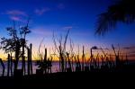 99 Sunset-DSCF4494
