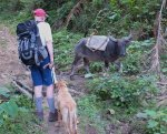 112 Hiking-DSCF0126