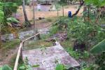 113 Irrigation-DSCF0264