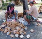 116 Coconut-DSCF0757