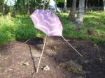 120 Umbrella-DSCF0992