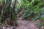 130 Hiking-DSCF1930