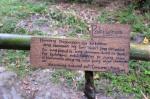 142 Hiking-DSCF3512