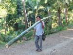 143 Bamboo-DSCF3541