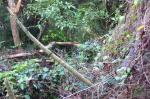 143 Hiking-DSCF3529
