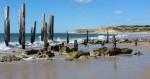 146 Beach-DSCF3790