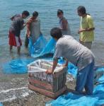 156 Fisherman-DSCF4992