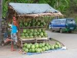 156 Watermelons-DSCF5115