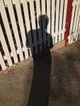 167 Shadow-IMG_0103