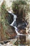 174 Waterfall Gully 99-3