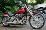 195 Harley-XT106695