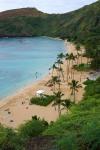 195 Hawaii-XT106638